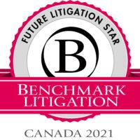 Future Litigation Star Logo