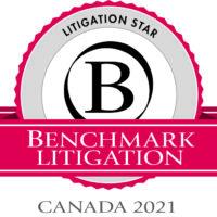 Litigation Star Logo